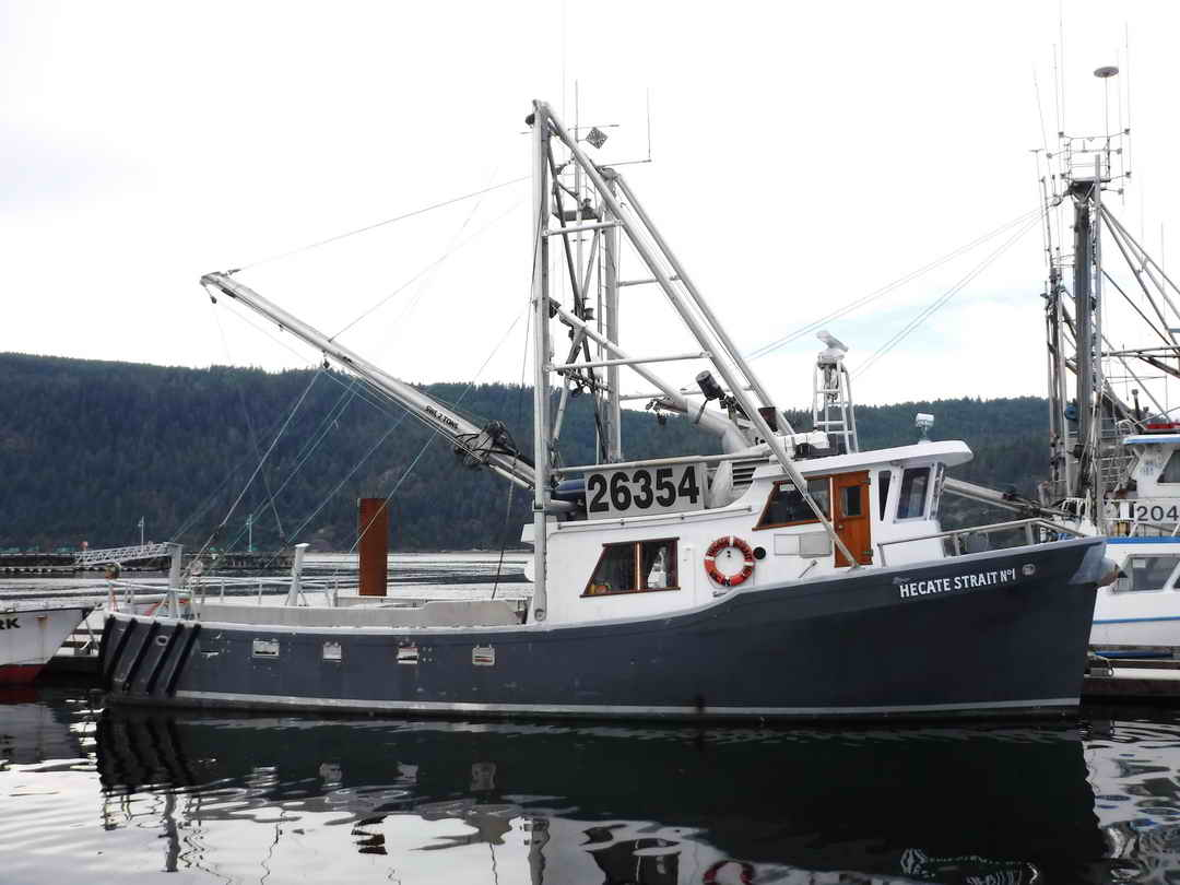 Pelagic Freezer Shrimp Trawler image 0
