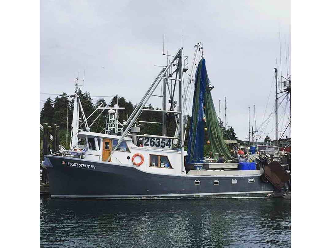 Pelagic Freezer Shrimp Trawler image 1