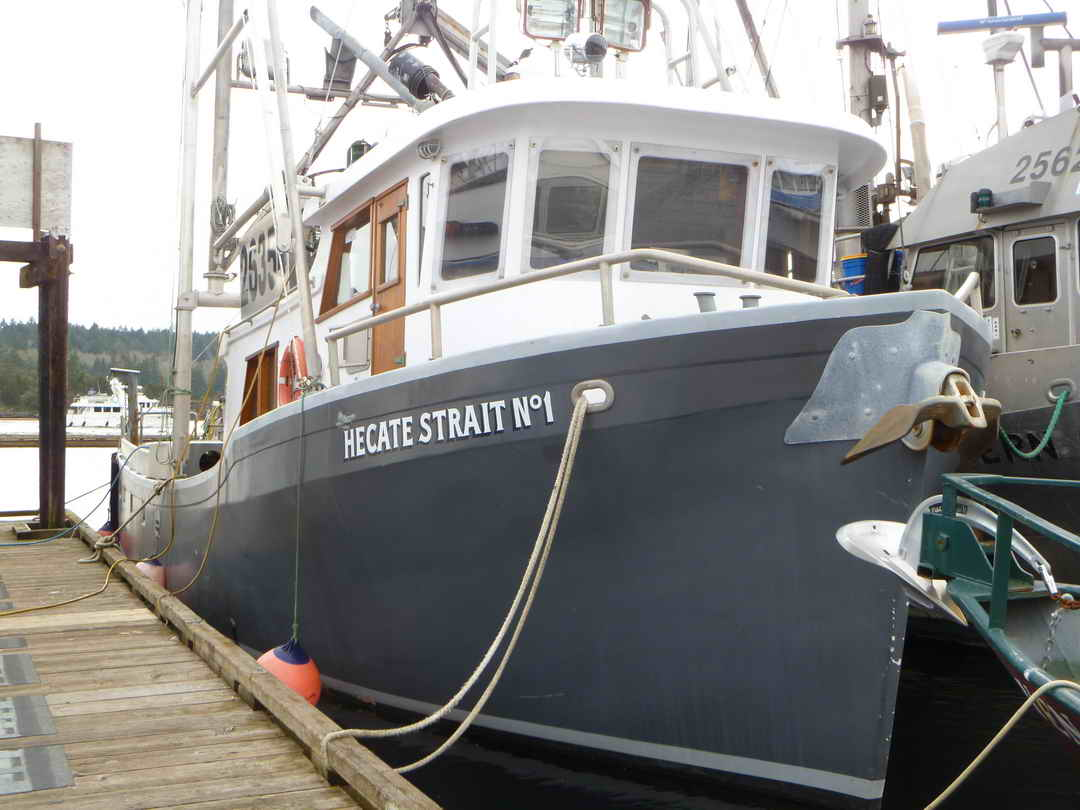 Pelagic Freezer Shrimp Trawler image 4