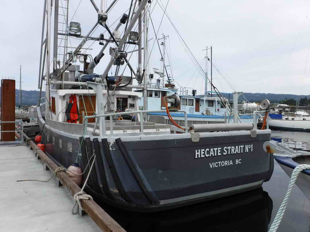 Pelagic Freezer Shrimp Trawler image 7