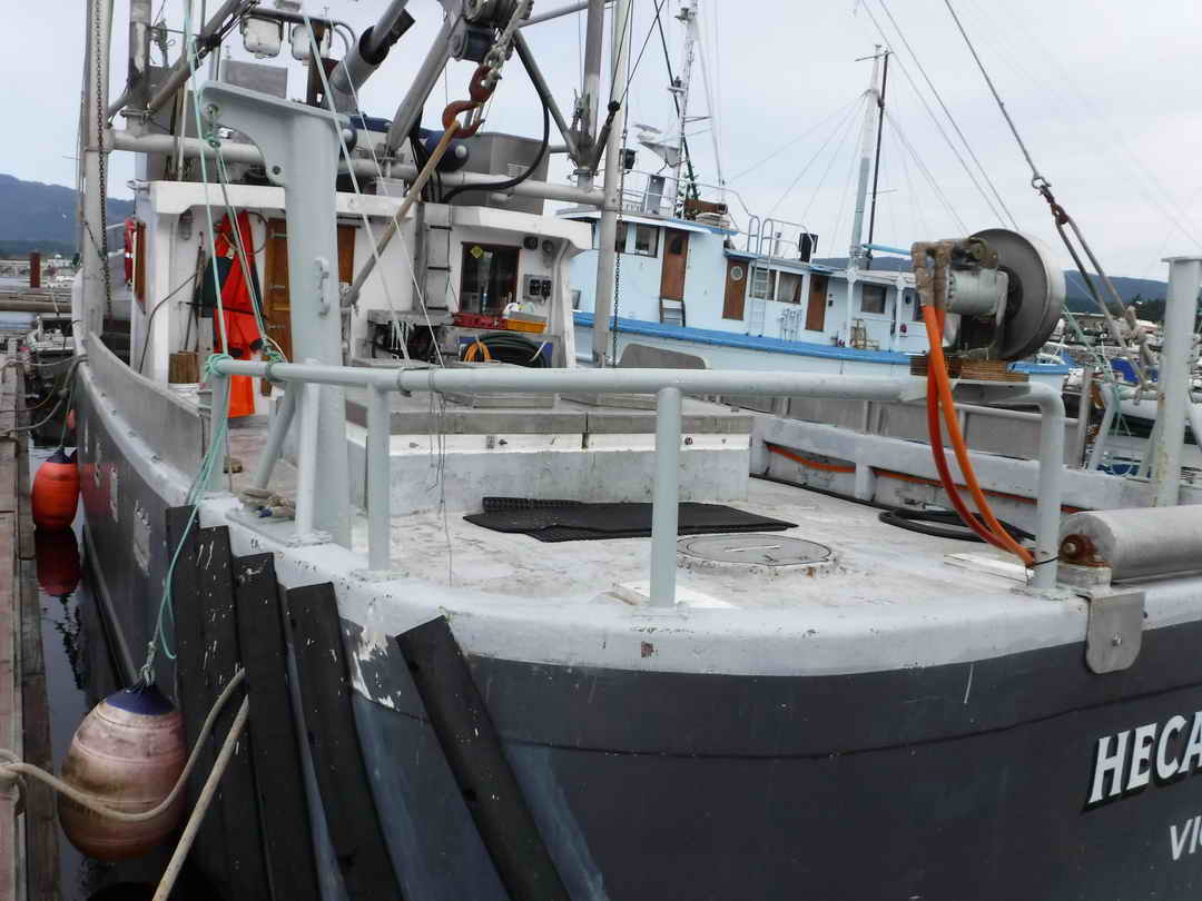 Pelagic Freezer Shrimp Trawler image 8