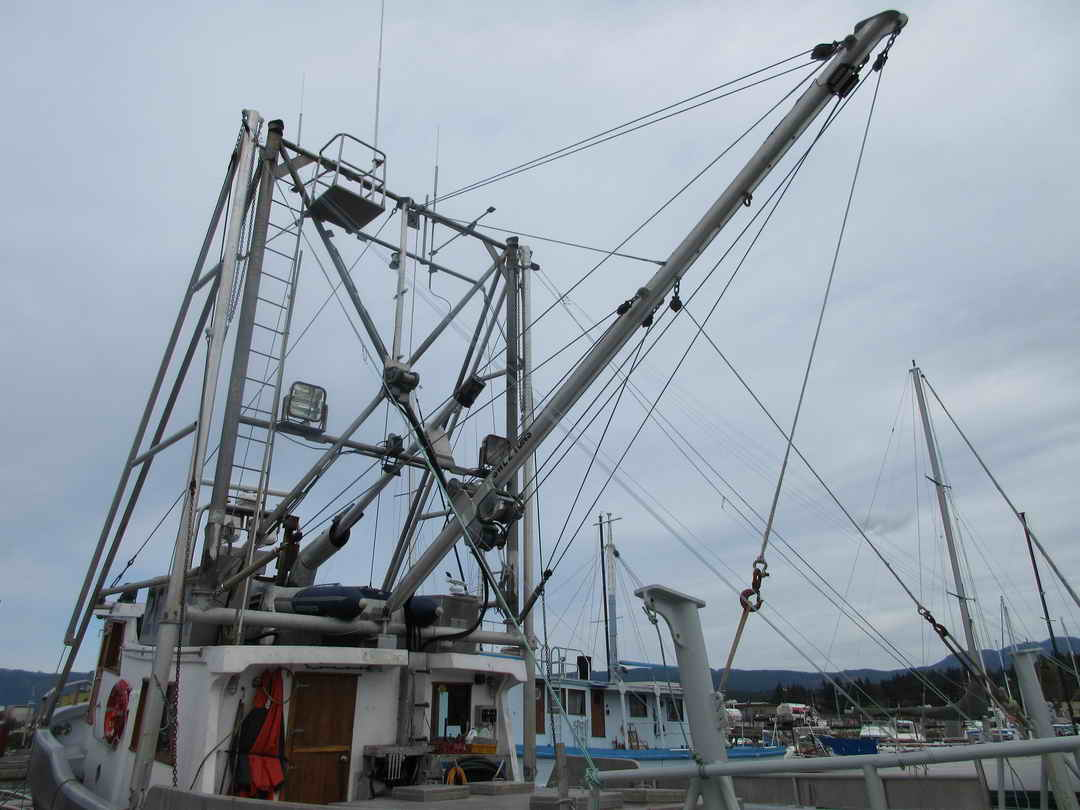 Pelagic Freezer Shrimp Trawler image 9