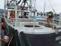 Pelagic Freezer Shrimp Trawler thumbnail image 8
