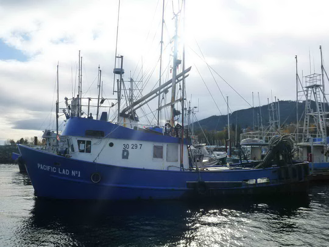 Tuna shrimp trawler longliner for Tuna fishing boats for sale