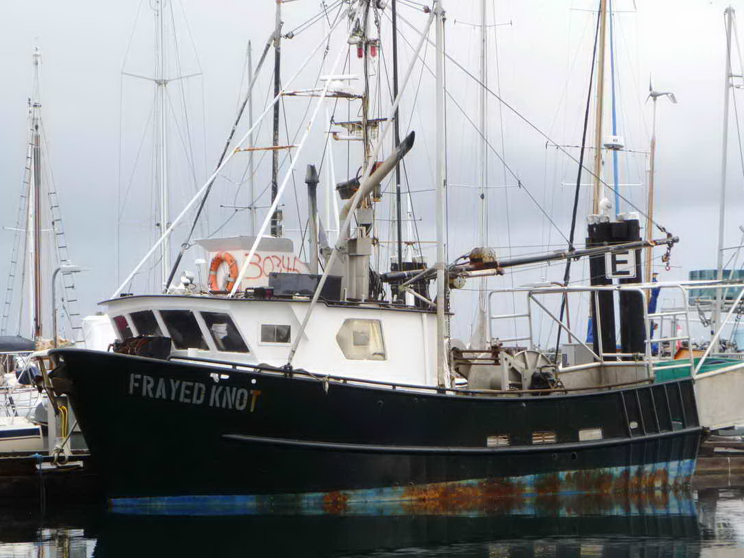 Commercial Fishing Crab Longliner image 0