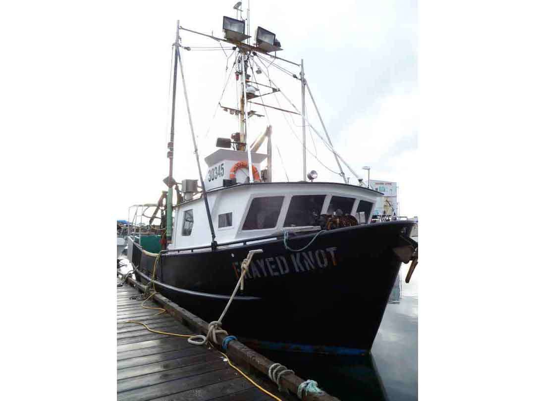 Commercial Fishing Crab Longliner image 1