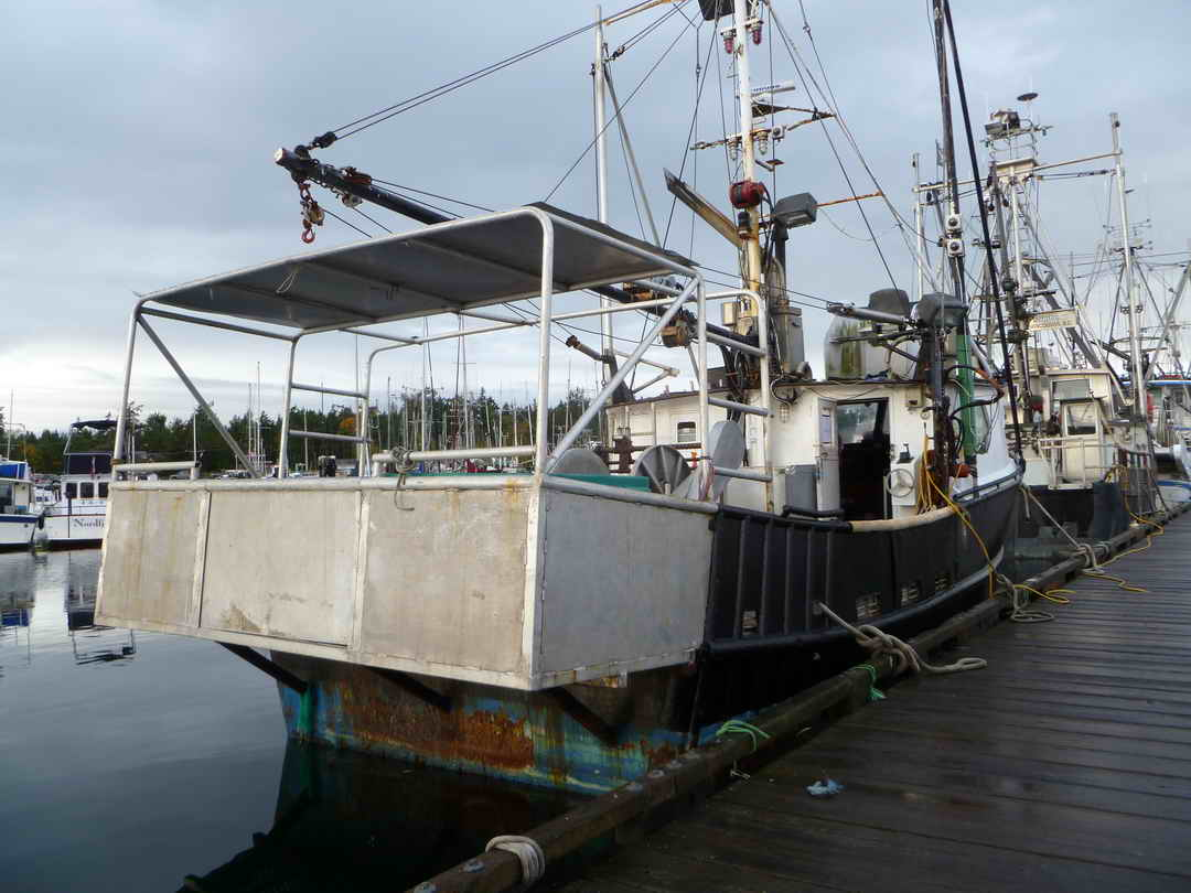 Commercial Fishing Crab Longliner image 3