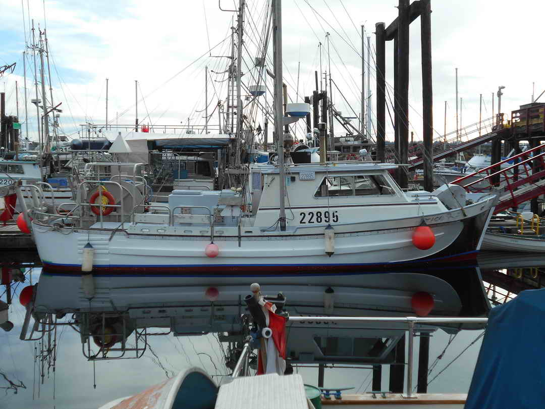 Gillnetter Fishing Boat image 2