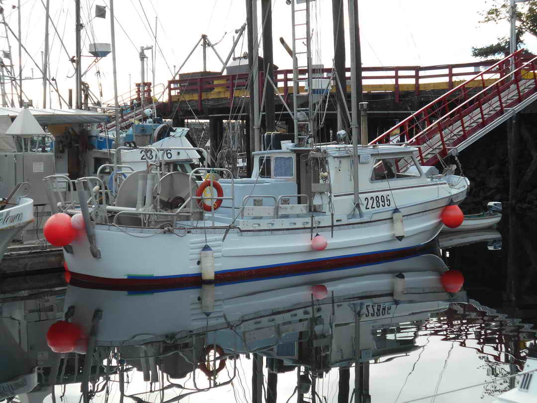 Gillnetter Fishing Boat image 3