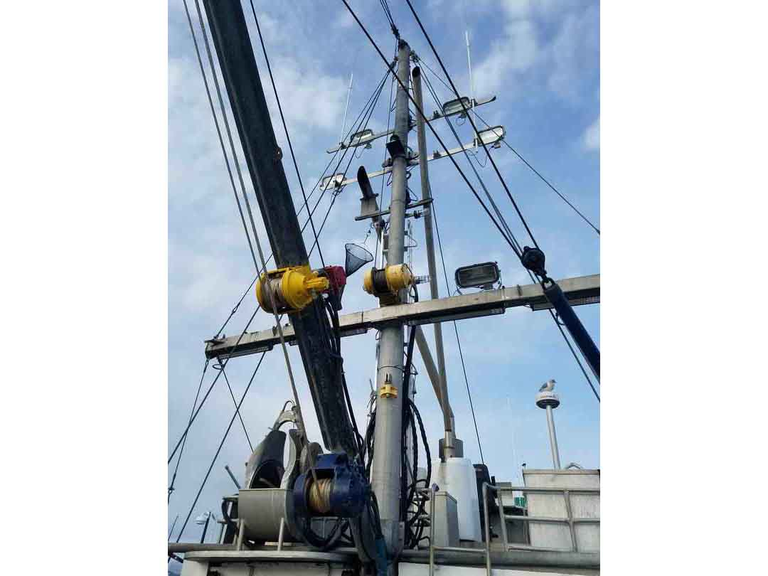 Commercial Combination Seiner image 7