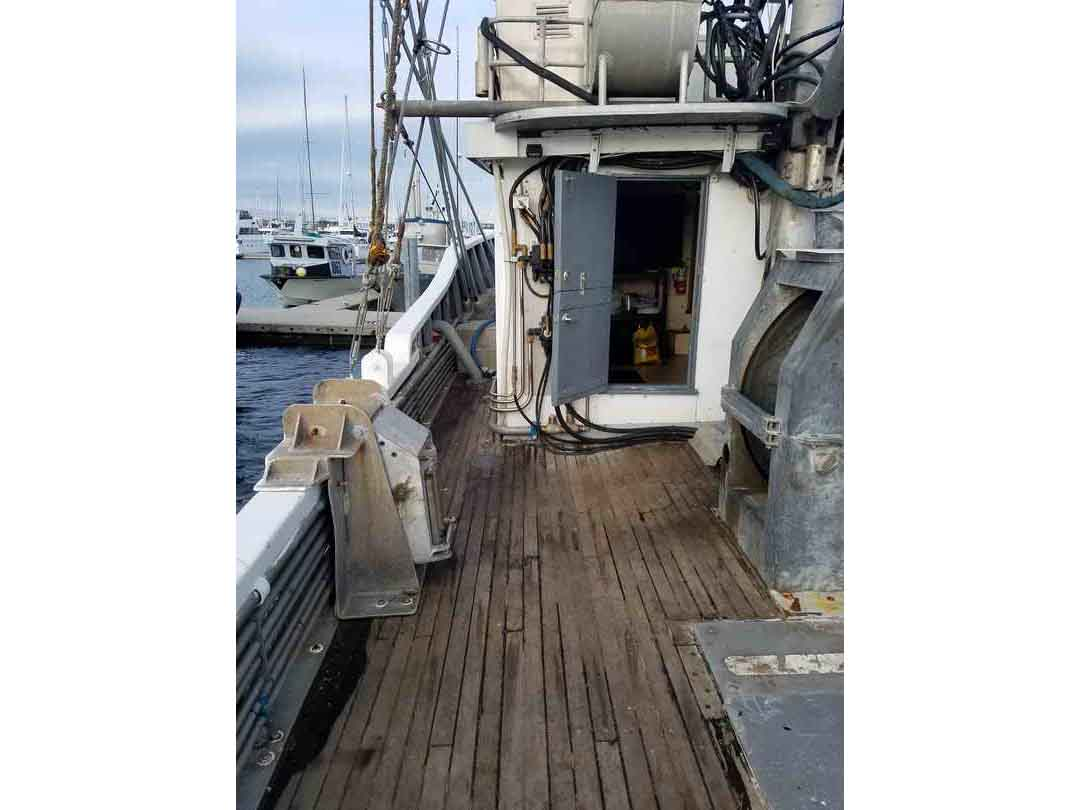 Commercial Combination Seiner image 14