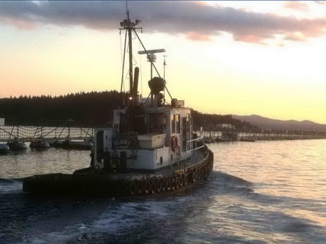 Harbour Tug Boat - Burger Boat Co. image 5