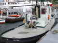 Harbour Tug Boat - Burger Boat Co. thumbnail image 13