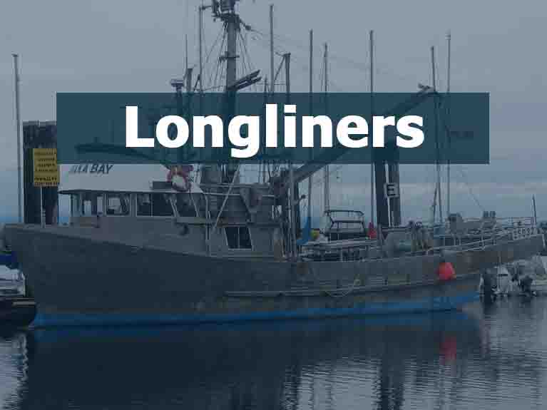 Longliners For Sale