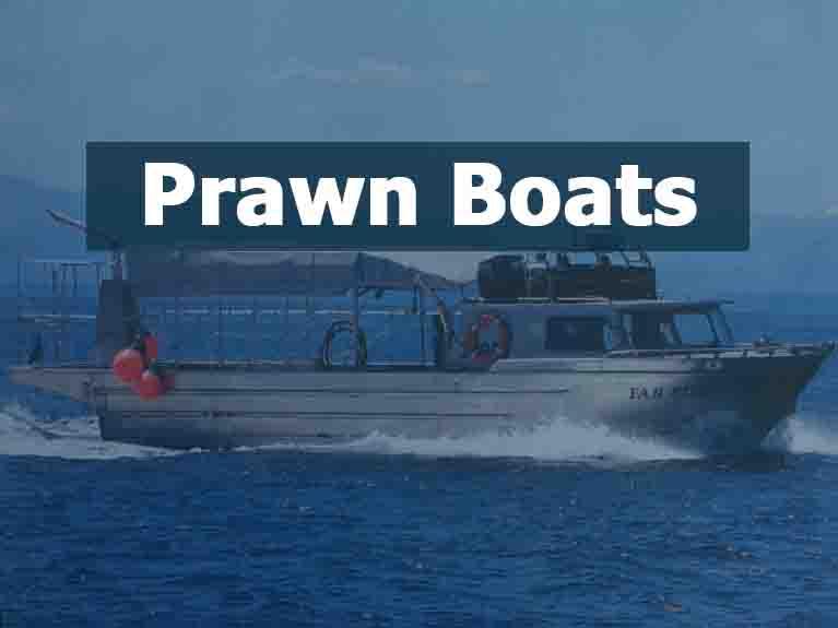 Prawn Boats For Sale